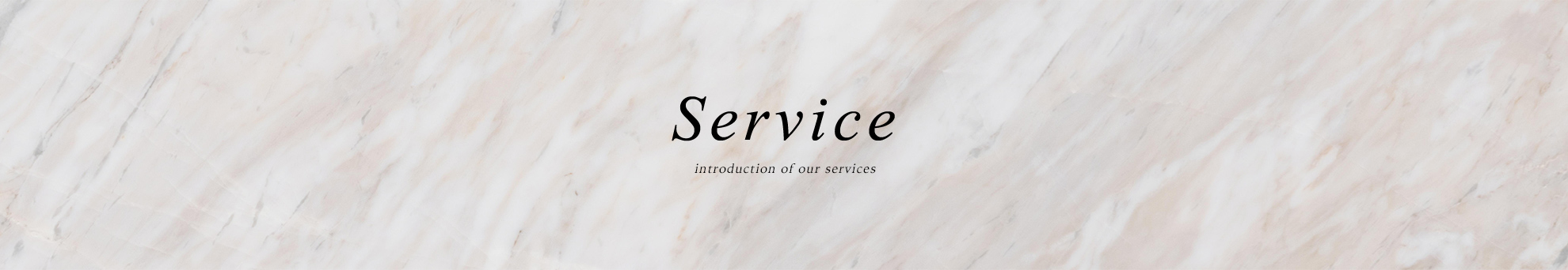 Service introduction of our services